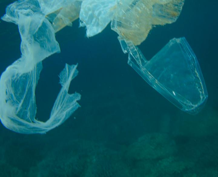 plastic soup pollution